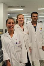 Téchnologistes médicaux, medical technologists